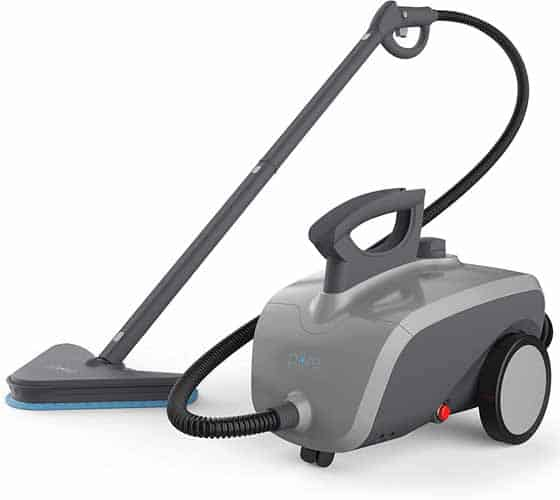 best dry steam cleaner for bed bugs